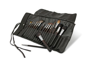 Pro Brush Set. 17 pc with Bag